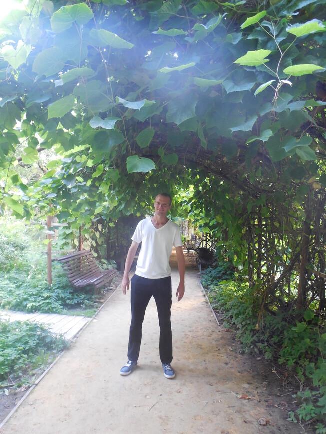 Аптекарский огород - романтическая аллея сада