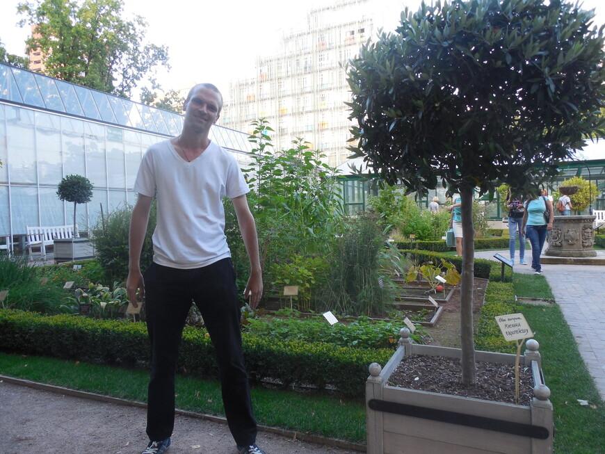 Аптекарский огород: сад лекарственных трав и оранжерейный комплекс