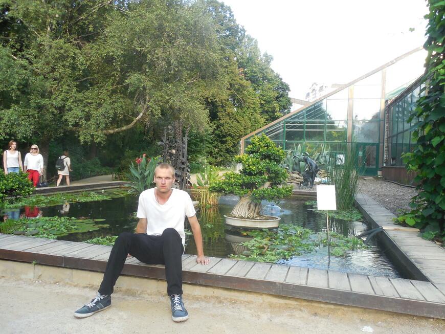 Аптекарский огород: оранжерейный комплекс и декоративный пруд