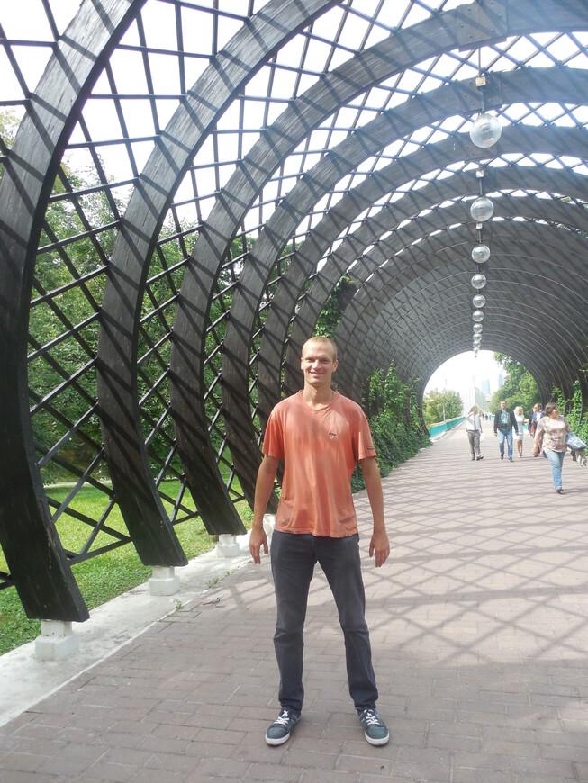 Плетёная арка