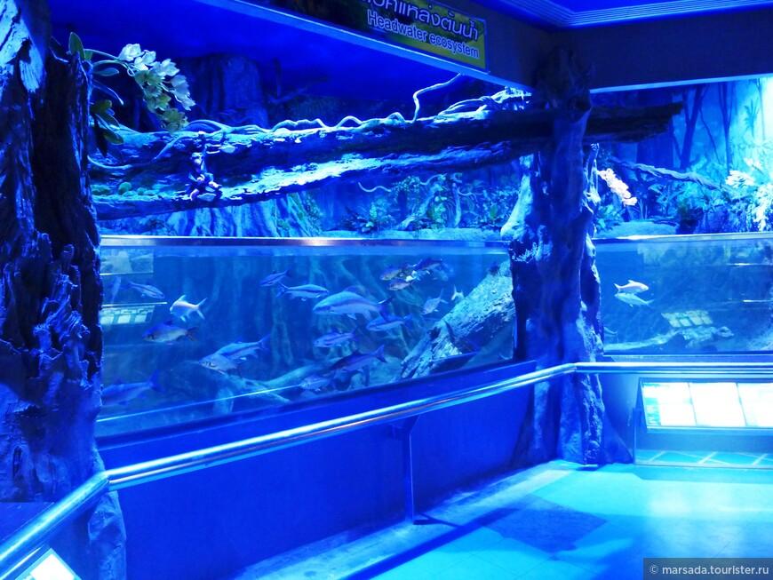 Каждый зал - разные части подводного мира