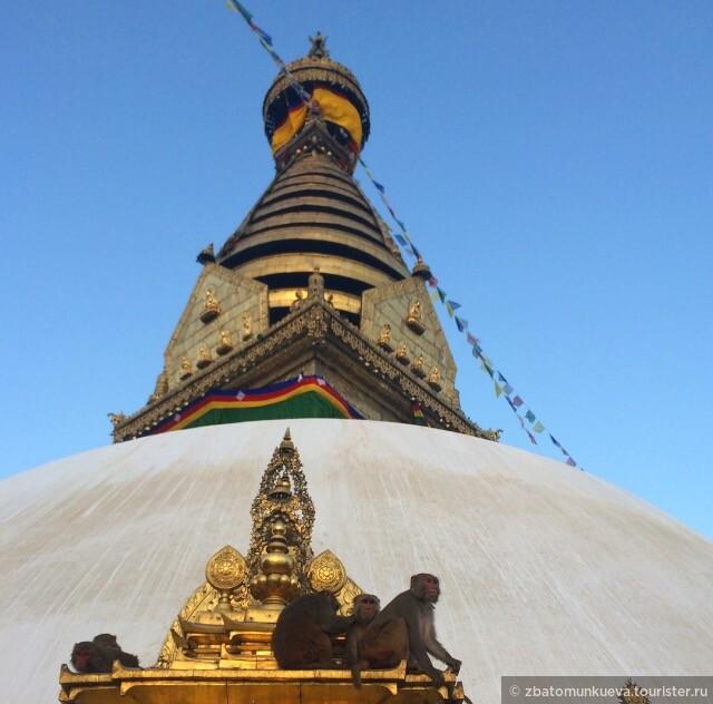 Ступа Сваямбунатх или другое популярное название Храм обезьян. Обезьян действительно много.