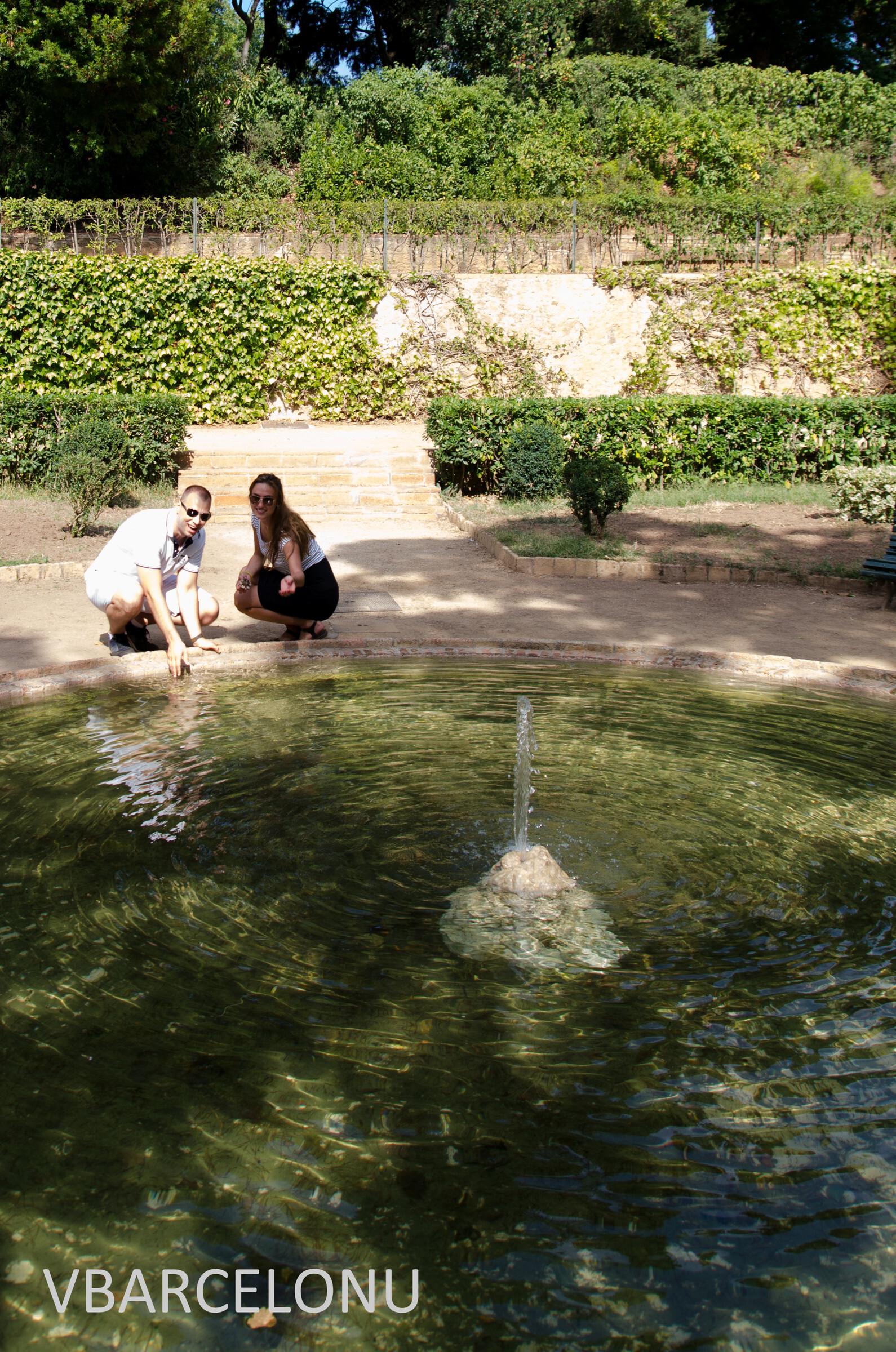 "Фото из альбома ""Парк-лабиринт Орта"", Барселона, Испания"