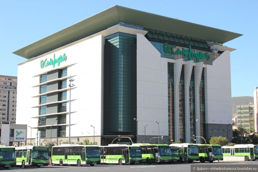 Столица Санта-Крус. 02.02.2013 (Santa Cruz de Tenerife)