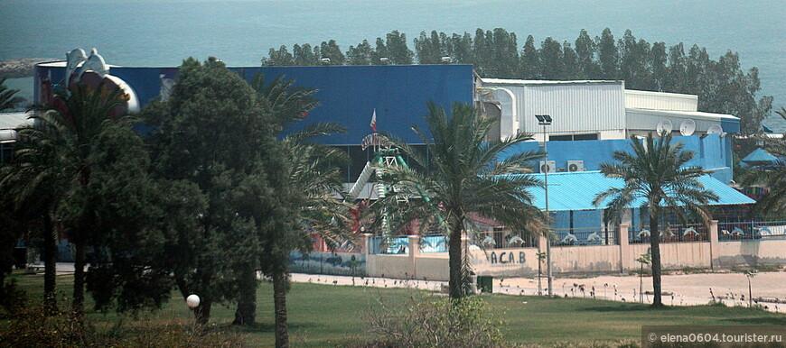 Около дельфинария есть детская игровая площадка, нам показалось, что вечером в этом парке около дельфинария собирается половина населения Манамы:)