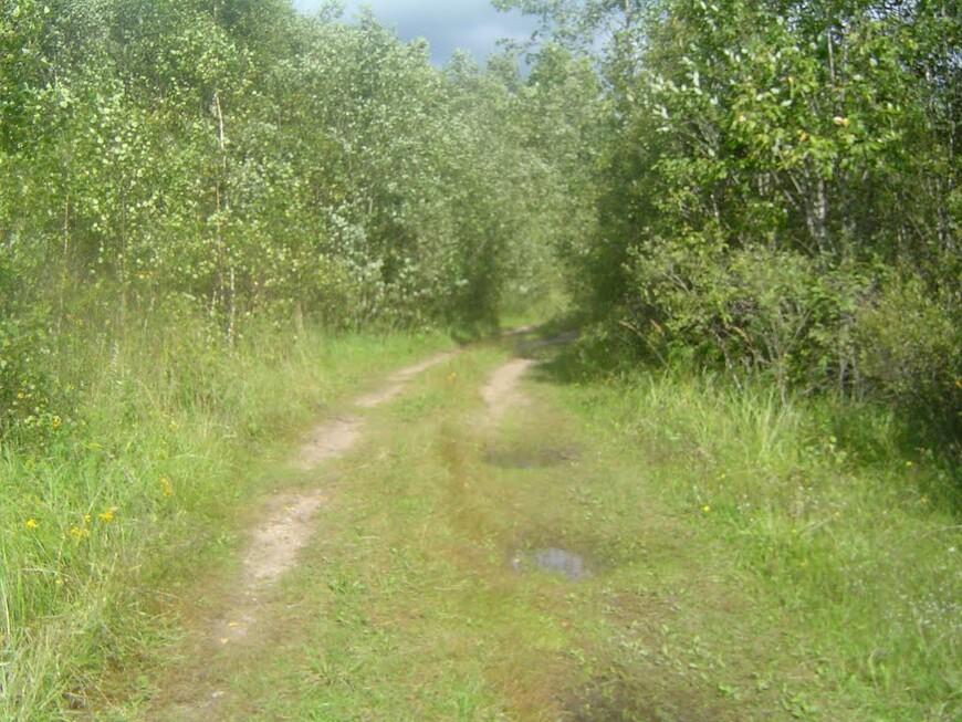 Дорога «Большой Каменец - Малый Каменец»