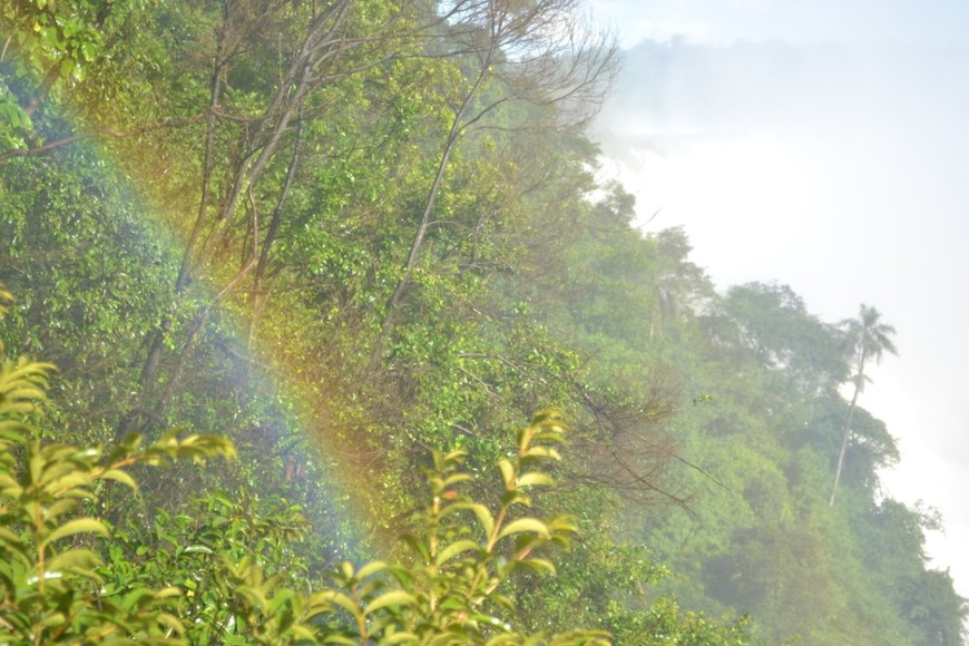 Эта радуга в жизни еще намного ярче. Она именно в этом месте всегда - сколько бы раз я ни приезжала на Игуасу, всегда на том же месте.