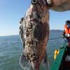 рыбалка в открытом море