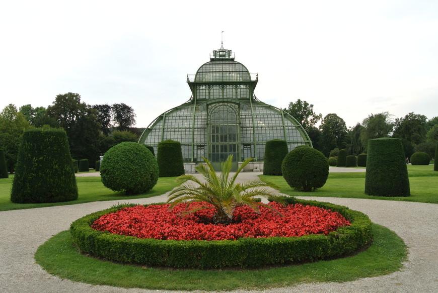 В Пальмовом доме Шёнбрунна собрана огромная коллекция экзотических растений. Это одна из крупнейших коллекций в Европе. В нём есть три помещения с разными климатическими зонами, в  которых произрастает около 4500 видов растений.