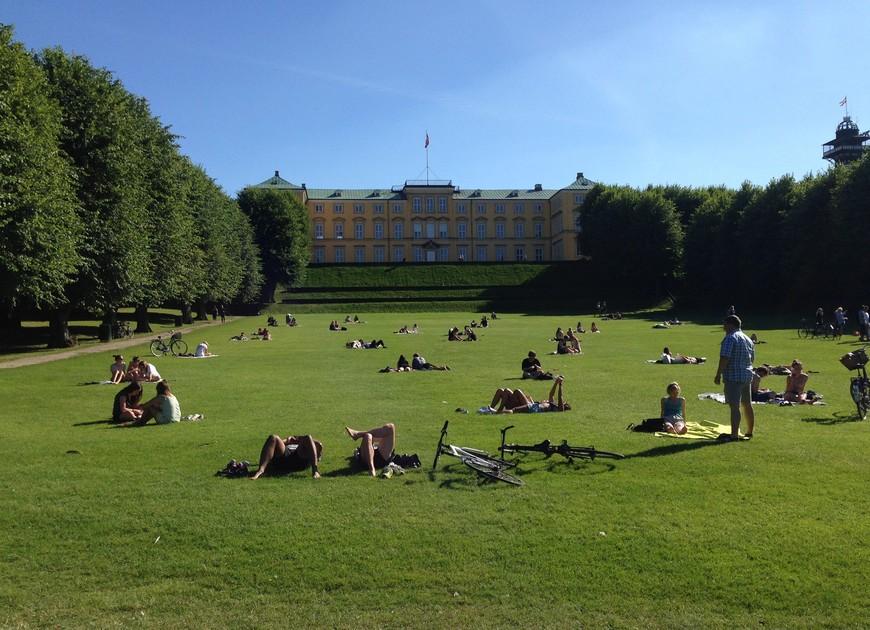 Парк Frederiksberg. С большим количеством деревьев, системой каскадных прудов и каналами. Идеальное место для пикника.