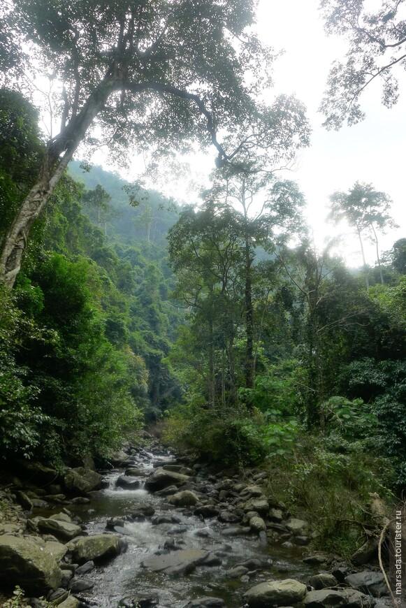 Но согласитесь, такие виды реликтового леса и такие пейзажи стоили этого!