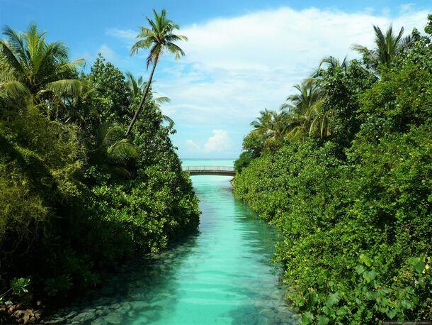 Мальдивы когда лучше ехать отдыхать. Мальдивы – сезон для отдыха по месяцам