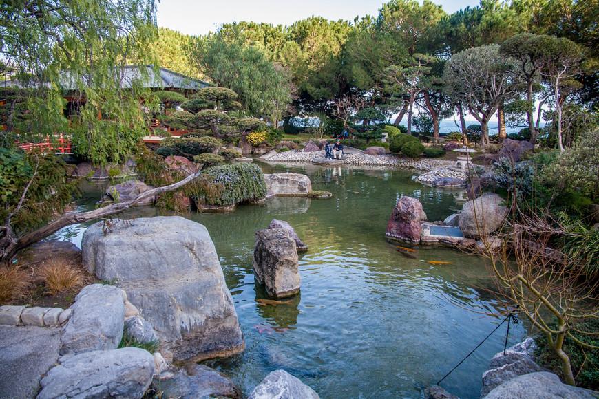 Пруд-один из обязательных элементов японского сада.