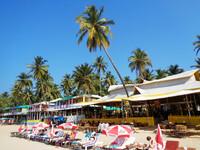 Палолем — тропический курорт на Южном Гоа
