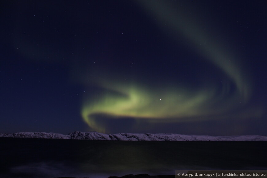Aurora Borealis: Жар птица