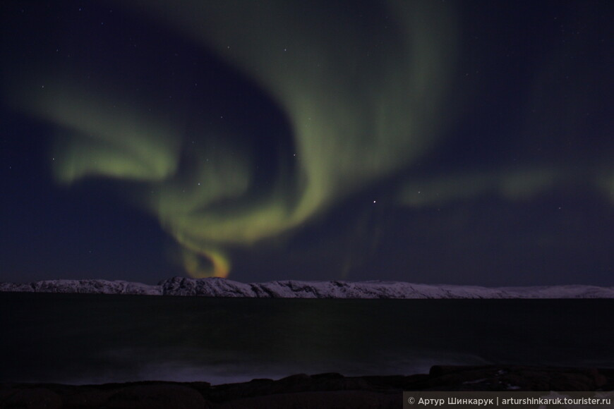 Aurora Borealis: джин
