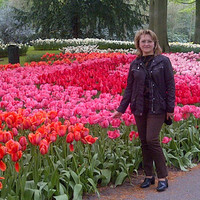 Богданова Елена (amstergid2008)