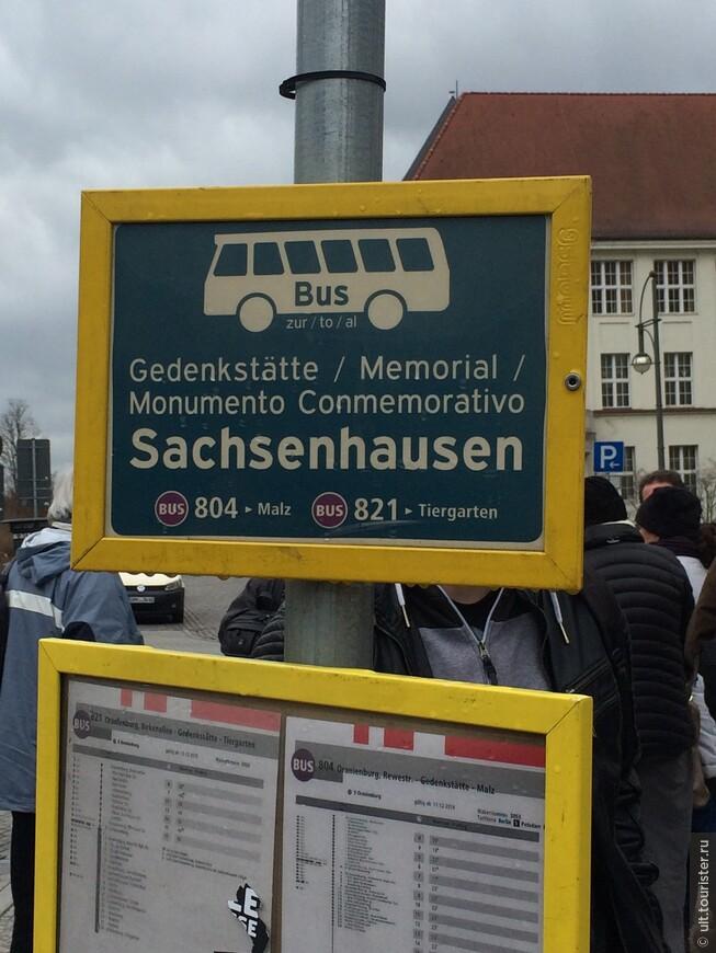 В Берлине самый удобный транспорт. Все по расписанию. Едете до станции Ораниенбаум и там остановка с автобусами до лагеря. Можно и пешком. Минут 15. Есть указатели