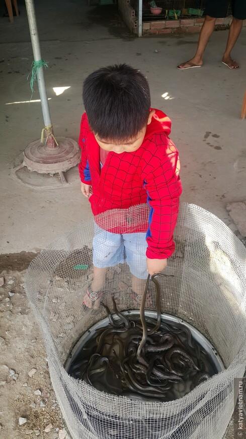 Смелые вьетнамские детишки)