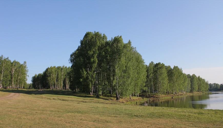 Пойма реки и просёлочная дорога к водопаду в Искитимском районе Новосибирской области.
