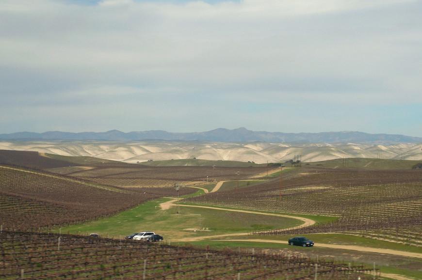 800 км плодородных земель Центральной Долины орошаются водами рек Сакраменто и Сан-Хоакин. Солнечный мягкий климат средиземноморского типа позволяет местным фермерам собирать урожаи круглый год. Здесь выращивают более 400 различных культур.