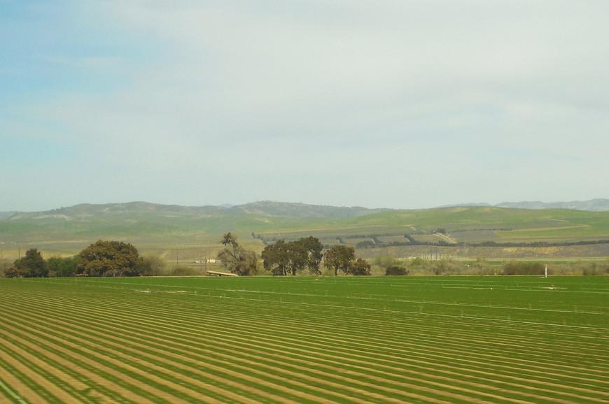 Таким именем штат обязан Central Valley of California – Центральной Калифорнийской долине, аграрному сердцу штата.