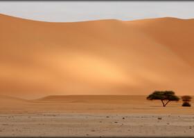 Алжирская Сахара, день второй — на вершине Тин Мерзуга