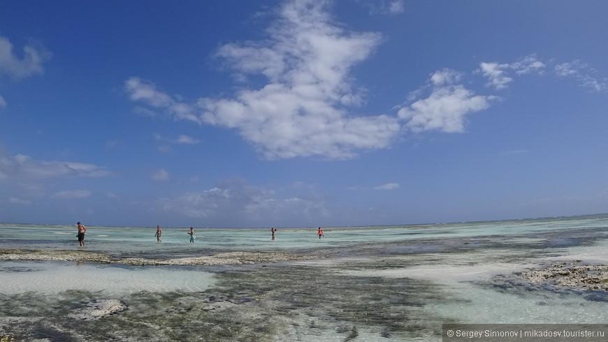 Море во время отлива
