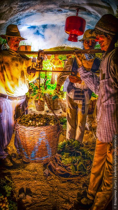 санторини музей виноделия (9).jpg