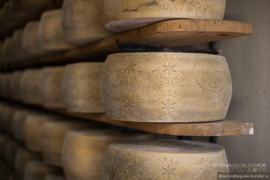 маленькое семейное производство сыра Лессинии