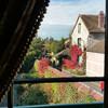 Вид из окна комнаты Клода Моне