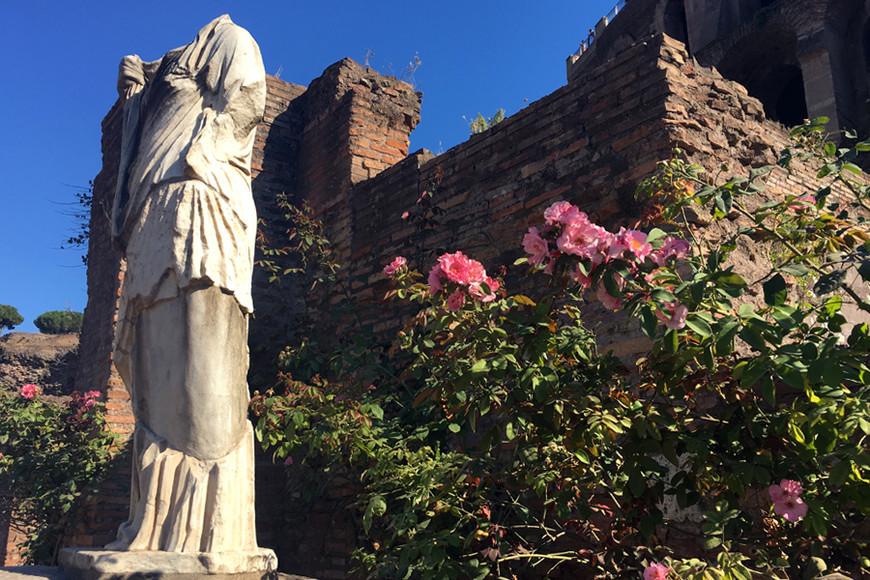 Римский форум можно детально изучить по миллионам фото в сети. Это фото о вечности и скоротечности. Кому древность, а кому цветочки, в общем