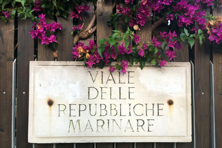 """Мое любимое фото. Сделано оно было в окрестностях Лидо-ди-Остии. С одной стороны — море, с другой — древний город Остия Антика. И вокруг больше ничего примечательного, кроме этого забора, увитого бугенвиллией. Для эстетов еще больше такой красоты — в моем рассказе """"Еще одна причина полюбить Италию"""""""