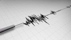 На Бали произошло землетрясение магнитудой 5.5