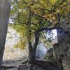 Территория крепости Ананури