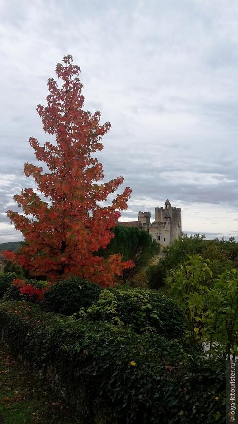 Осенний пейзаж с кленом. Вдалеке - замок Бейнак