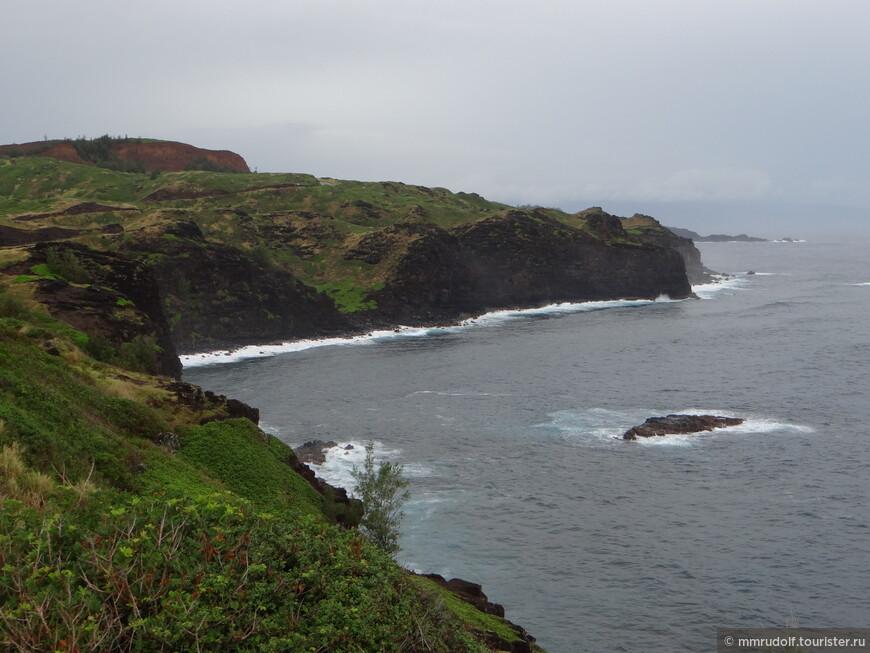 северная часть острова Мауи-другой климат,другая растительность