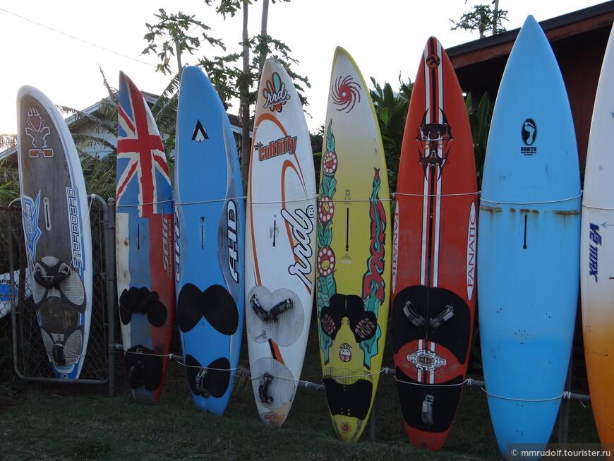 забор из сёрфовых досок