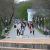 пешеходная аллея в парке
