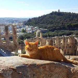 Холмы Акрополис и Ликавиттос