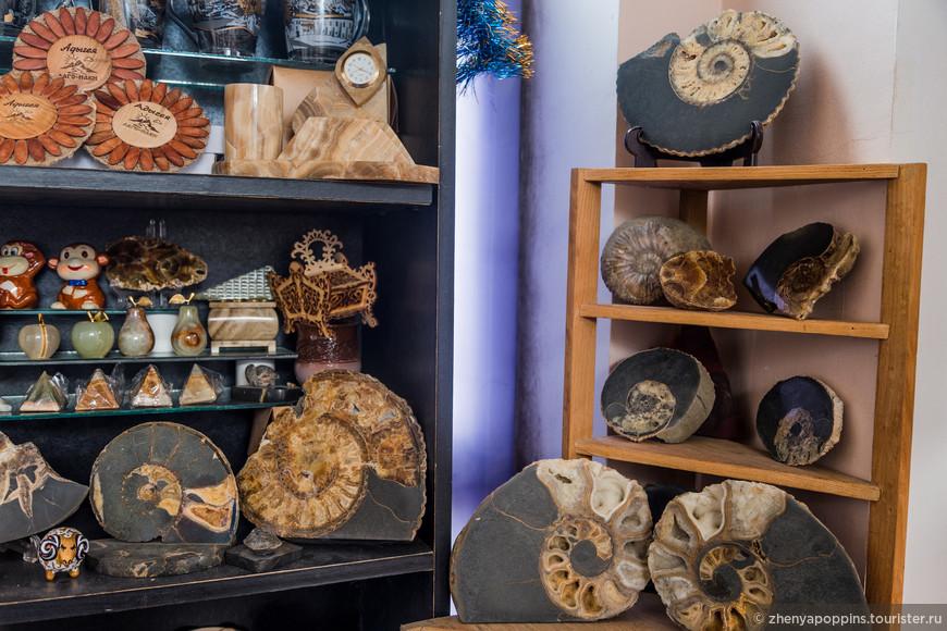 Аммониты  - древние окаменелые моллюски. В Адыгее их много. Особенно урожайный июнь,  когда бурная река выносит на берег свои тайны.