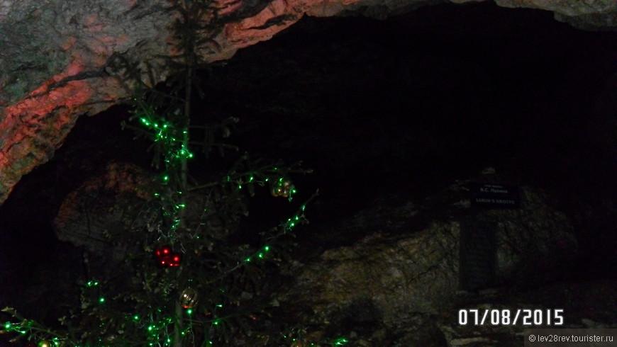 Елочка в Кунгурской пещере. Экскурсовод нам рассказала такую историю. В 70-80 годах прошлого века, работники пещеры встречали Новый год, и забыли выкинуть елку. Какое же было удивление работников пещеры, когда через полгода они нашли забытую елку в том же состоянии, в каком она была на Новый год. Та елка простояла в пещере более 10 лет, это уже другая ель и стоит она в пещере уже не один год. А выглядит как только что срубленная зеленая красавица