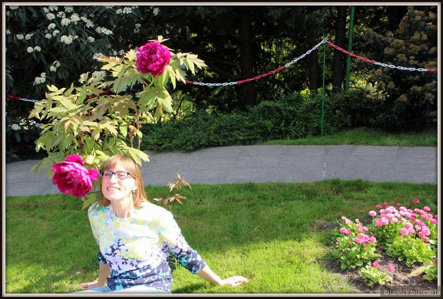Мое лицо рядом просто для того, чтобы показать размер этого прекрасного цветка. Конечно, по другим параметрам  мне никогда с ним не сравнится :-)))