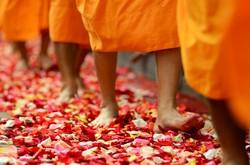 В Таиланде пройдёт необычная церемония посвящения в монахи
