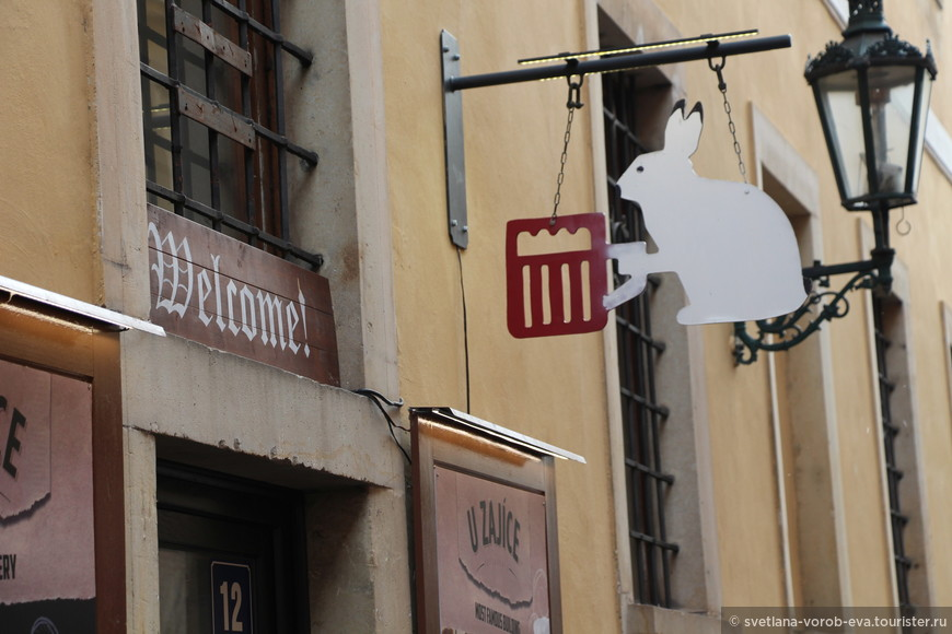 """Пивная """"У Зайца"""" расположена в самом центре Праги. Очень атмосферное заведение с умеренными ценами (что весьма порадовало). Пиво сварено на совесть. Впервые попробовала зелёное))))"""