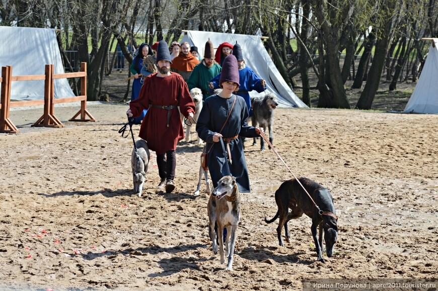 Для театрализованной постановки легенды Турнира использовались древние породы собак, именно таких собак можно видеть на средневековых фресках.