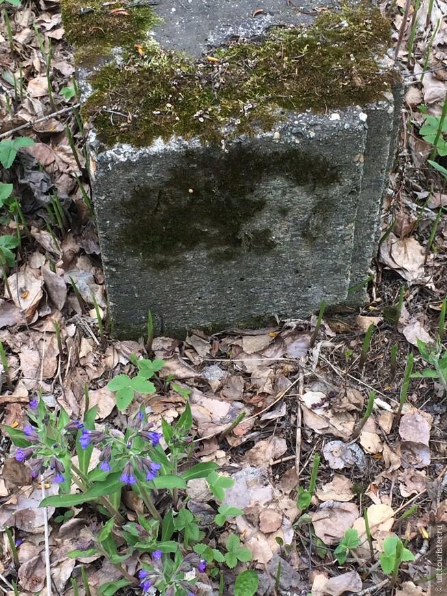 кладбище михайловское 160.JPG