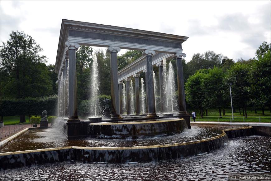 Львиный каскад расположен на аллее, ведущей к Эрмитажу, что и предопределило его прежнее название - Эрмитажный каскад. По замыслу Петра I первый, Эрмитажный, каскад здесь возник в 1801 году. Он был построен из пудостского камня по проекту А. Воронихина. Каскад представлял собой П-образный бассейн с водопадными уступами, декорированный восьмью фонтанными вазами и двумя бронзовыми фигурами львов.