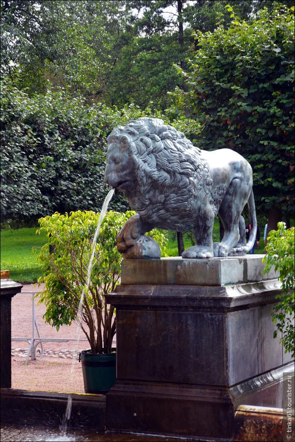 Один из львов  Львиного каскада.