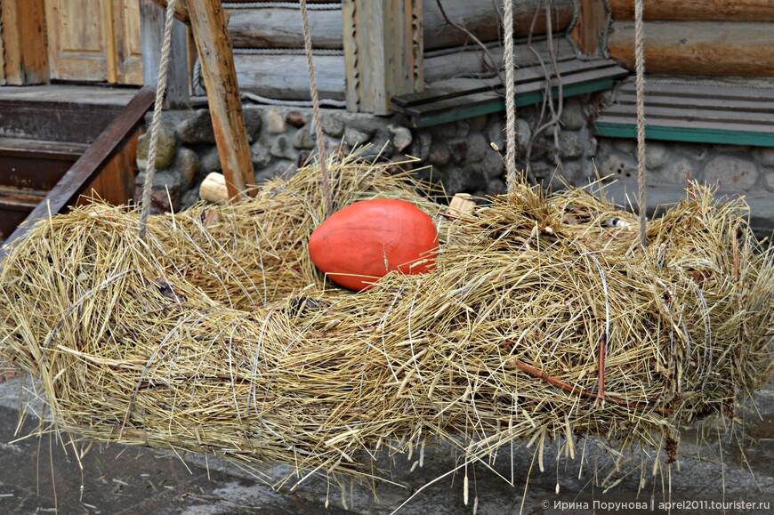 Как же хорошо, наверное, побыть не на долго на месте этого яйца)